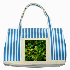 Christmas Season Floral Green Red Skimmia Flower Striped Blue Tote Bag by yoursparklingshop