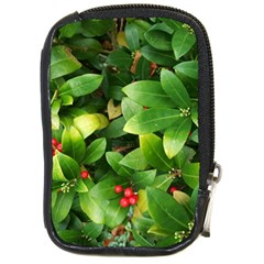 Christmas Season Floral Green Red Skimmia Flower Compact Camera Cases by yoursparklingshop
