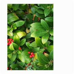 Christmas Season Floral Green Red Skimmia Flower Small Garden Flag (two Sides) by yoursparklingshop