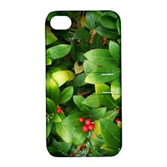 Christmas Season Floral Green Red Skimmia Flower Apple Iphone 4/4s Hardshell Case With Stand by yoursparklingshop