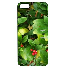 Christmas Season Floral Green Red Skimmia Flower Apple Iphone 5 Hardshell Case With Stand by yoursparklingshop