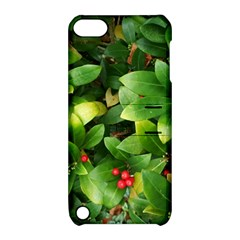 Christmas Season Floral Green Red Skimmia Flower Apple Ipod Touch 5 Hardshell Case With Stand by yoursparklingshop