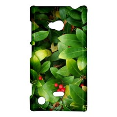 Christmas Season Floral Green Red Skimmia Flower Nokia Lumia 720 by yoursparklingshop
