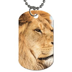 Big Male Lion Looking Right Dog Tag (one Side) by Ucco