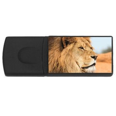 Big Male Lion Looking Right Rectangular Usb Flash Drive by Ucco