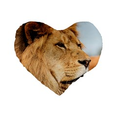Big Male Lion Looking Right Standard 16  Premium Heart Shape Cushions by Ucco