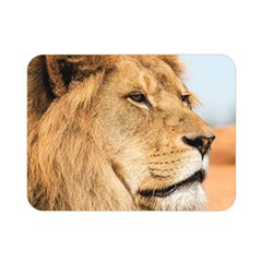 Big Male Lion Looking Right Double Sided Flano Blanket (mini)  by Ucco