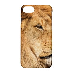 Big Male Lion Looking Right Apple Iphone 7 Hardshell Case by Ucco