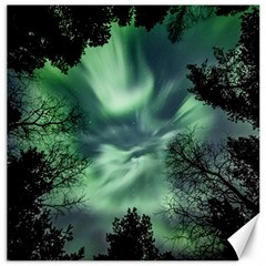 Northern Lights In The Forest Canvas 20  X 20   by Ucco