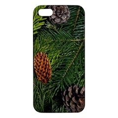 Branch Christmas Cone Evergreen Apple Iphone 5 Premium Hardshell Case by Celenk