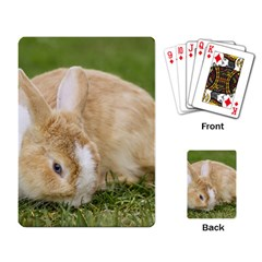 Beautiful Blue Eyed Bunny On Green Grass Playing Card by Ucco