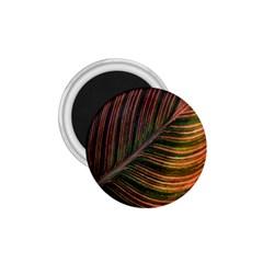 Leaf Colorful Nature Orange Season 1 75  Magnets by Celenk