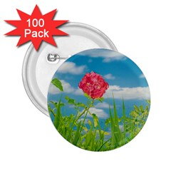 Beauty Nature Scene Photo 2 25  Buttons (100 Pack)  by dflcprints
