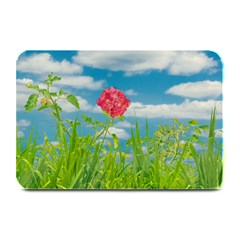 Beauty Nature Scene Photo Plate Mats by dflcprints