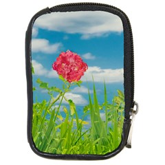 Beauty Nature Scene Photo Compact Camera Cases by dflcprints