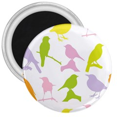 Birds Colourful Background 3  Magnets by Celenk