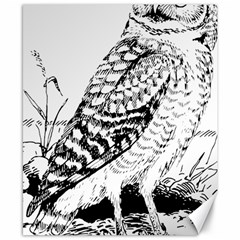 Animal Bird Forest Nature Owl Canvas 8  X 10