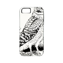 Animal Bird Forest Nature Owl Apple Iphone 5 Classic Hardshell Case (pc+silicone) by Celenk