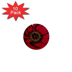Floral Flower Petal Plant 1  Mini Magnet (10 Pack)  by Celenk