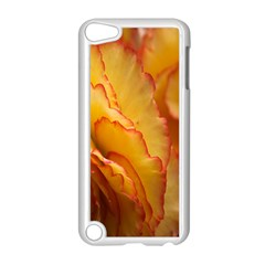 Flowers Leaves Leaf Floral Summer Apple Ipod Touch 5 Case (white) by Celenk