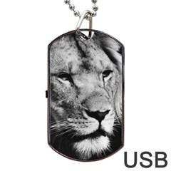 Africa Lion Male Closeup Macro Dog Tag Usb Flash (one Side) by BangZart