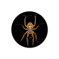 Insect Macro Spider Colombia Rubber Round Coaster (4 Pack)  by BangZart