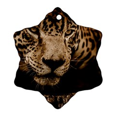 Jaguar Water Stalking Eyes Snowflake Ornament (two Sides) by BangZart