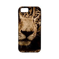 Jaguar Water Stalking Eyes Apple Iphone 5 Classic Hardshell Case (pc+silicone)