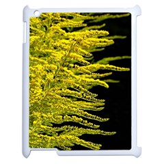 Golden Rod Gold Diamond Apple Ipad 2 Case (white) by BangZart