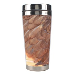 Feather Chicken Close Up Red Stainless Steel Travel Tumblers by BangZart