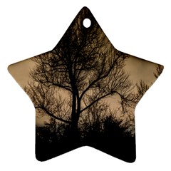 Tree Bushes Black Nature Landscape Star Ornament (two Sides) by BangZart