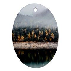 Trees Plants Nature Forests Lake Ornament (oval) by BangZart