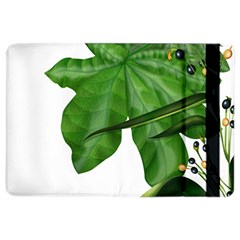 Plant Berry Leaves Green Flower Ipad Air 2 Flip by BangZart