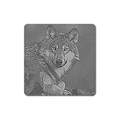 Wolf Forest Animals Square Magnet by BangZart