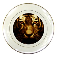 Cat Tiger Animal Wildlife Wild Porcelain Plates by Celenk