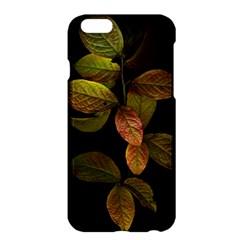 Autumn Leaves Foliage Apple Iphone 6 Plus/6s Plus Hardshell Case by Celenk