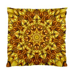 Abstract Antique Art Background Standard Cushion Case (two Sides) by Celenk