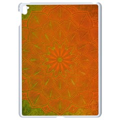 Background Paper Vintage Orange Apple Ipad Pro 9 7   White Seamless Case by Celenk