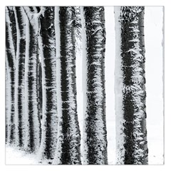 Row Trees Nature Birch Large Satin Scarf (square) by Celenk