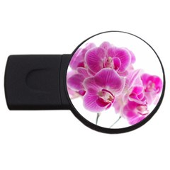 Orchid Phaleonopsis Art Plant Usb Flash Drive Round (2 Gb) by Celenk
