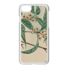 Vintage Watercolour Watercolor Apple Iphone 7 Seamless Case (white) by Celenk