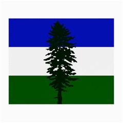 Flag Of Cascadia Small Glasses Cloth (2 Side) by abbeyz71