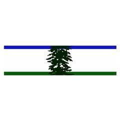 Flag Of Cascadia Satin Scarf (oblong) by abbeyz71