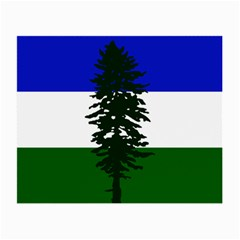 Flag Of Cascadia Small Glasses Cloth (2 Side) by abbeyz71