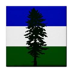Flag Of Cascadia Face Towel by abbeyz71