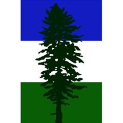 Flag Of Cascadia 5 5  X 8 5  Notebooks by abbeyz71