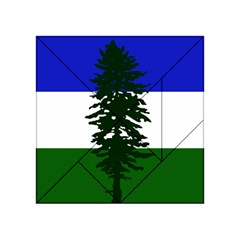 Flag Of Cascadia Acrylic Tangram Puzzle (4  X 4 ) by abbeyz71