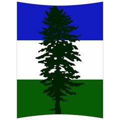 Flag Of Cascadia Back Support Cushion by abbeyz71