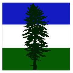 Flag Of Cascadia Large Satin Scarf (square) by abbeyz71