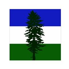 Flag Of Cascadia Small Satin Scarf (square) by abbeyz71